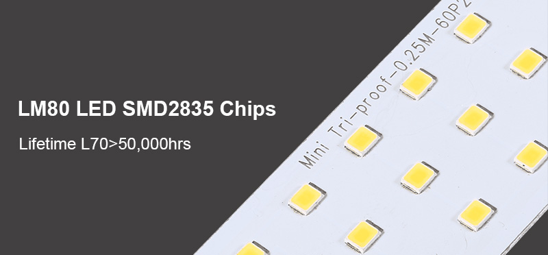2835 LED Tri-proof fény